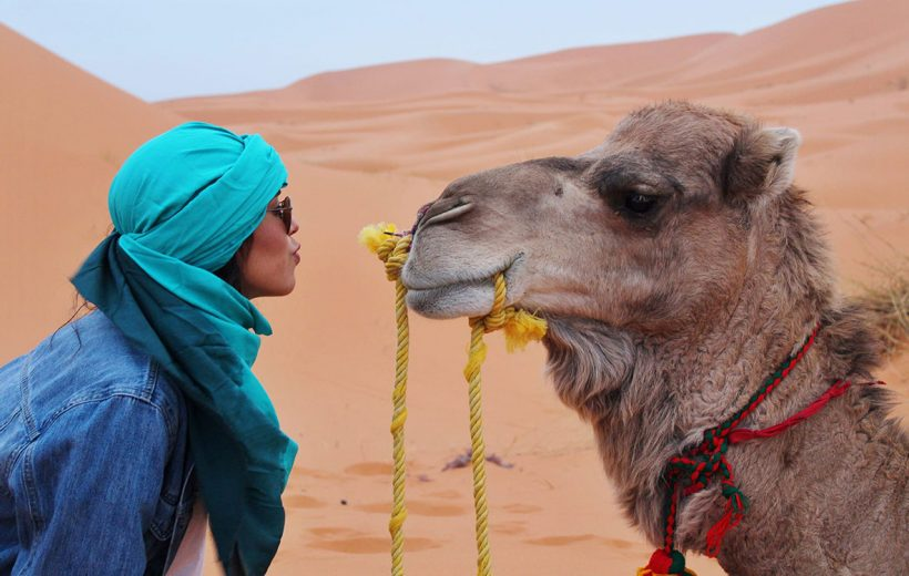 Highlights of Morocco-8 day
